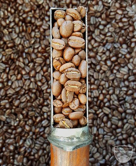 Ranjuan light roast coffee
