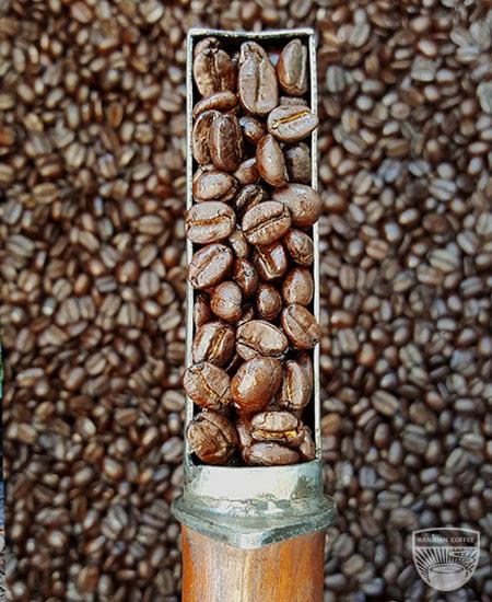 Ranjuan medium roast coffee